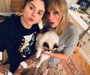 Taylor Swift, selena gomez, and cat image