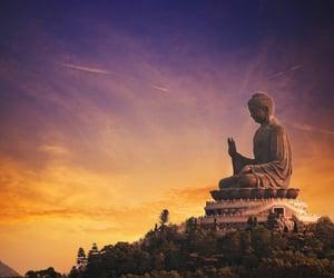 buddhism, empathy, and philosophy image