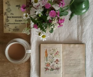 book and spring image
