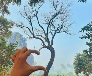 hand, heart, and nature image