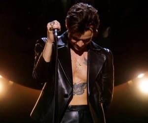 grammys, handsome, and Harry Styles image