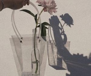 aesthetic, minimal, and shadow image