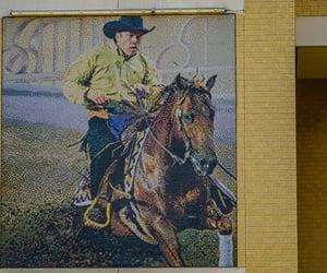 art, cowboy, and Texas image