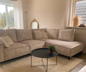 beige, carpet, and couch image