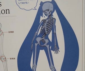archive, blue, and skeleton image