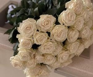 flowers, aesthetics, and fashion image