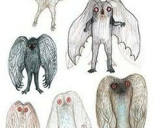 cryptid, cryptids, and eerie image
