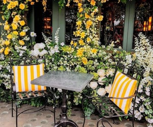 bistro, flowers, and seats image