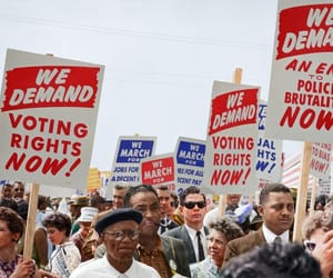 politics, racism, and voter rights image