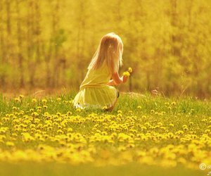 flowers, girl, and field image