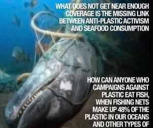 activism, change, and ocean image