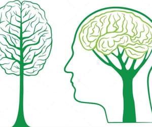 cerveau, homme, and nature image