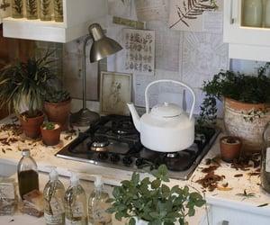aesthetic, botany, and kitchen image
