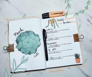 article, bujo cover page, and bujo image