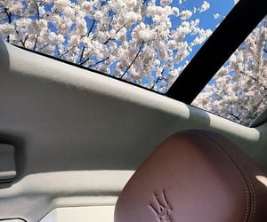 car, pink, and flower image