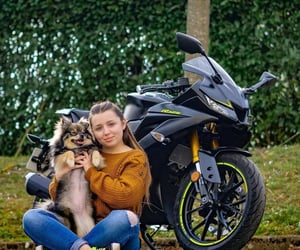 cute animals, dog, and motorcycle image