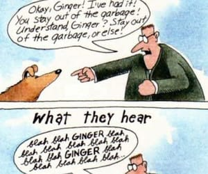 artist, gary larson, and what we say to dogs image