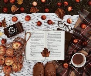 Fall, I love you! 🐻
