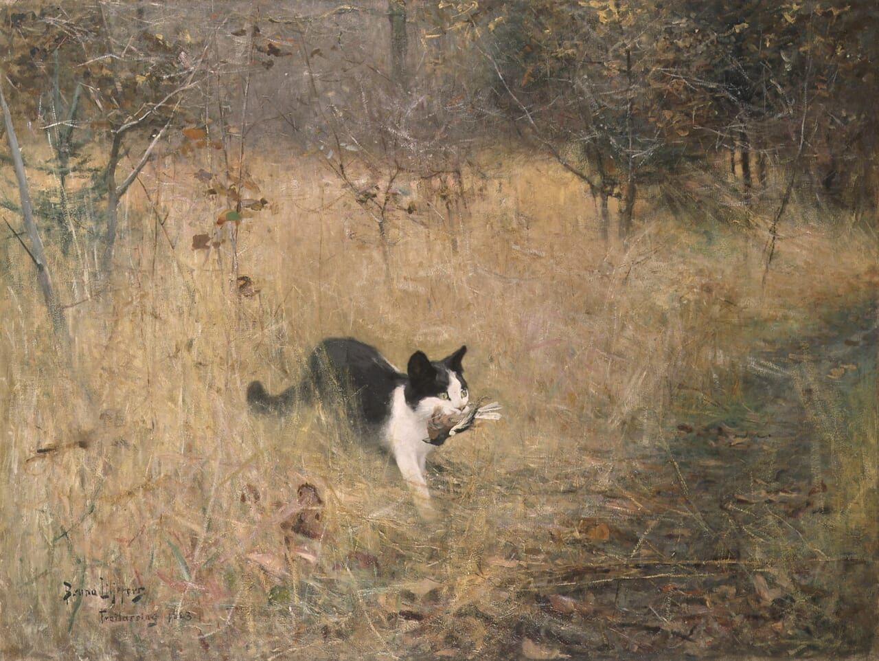 art, cats, and hunting image