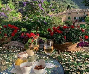 flowers, garden, and wine image