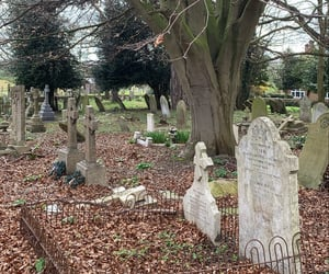creepy, grave, and graveyard image