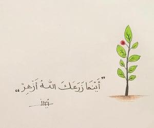 روُح, السلام, and جُمال image