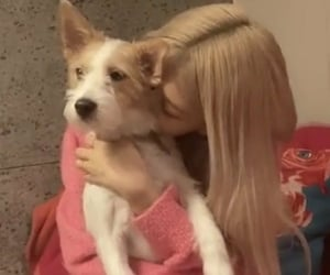 dog, girls, and kpop image