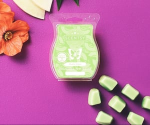 wax, scented wax, and scentsy image