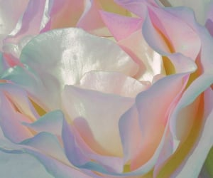 archive and pastel image