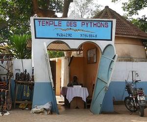 entrance, python, and travel image