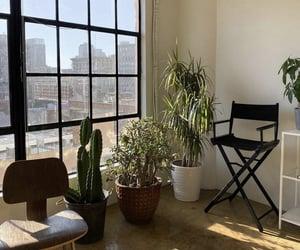 bloom, decor, and design image