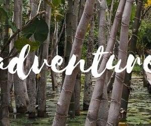 aventura, naturaleza, and viaje image