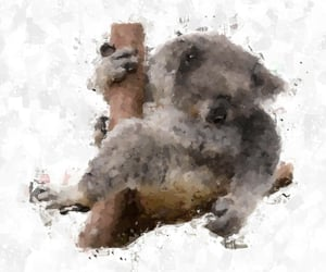 Koala, painting, and cuteanimals image