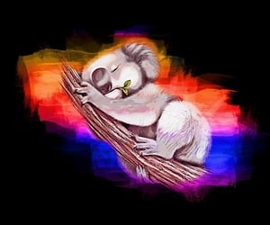 digitalart, koalapainting, and Koala image