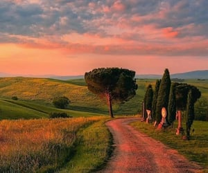 nature, italy, and sunset image