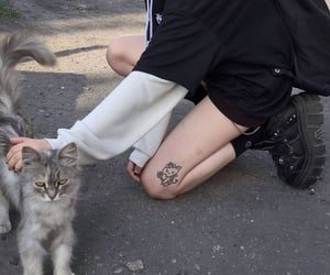 cat, grunge, and tattoo image