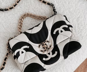 bag, accessories, and fashion image