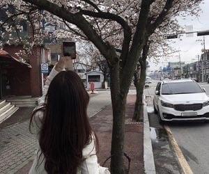 girl, ulzzang, and spring image
