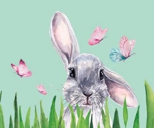 animal, april, and background image
