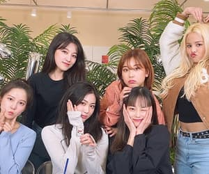 archive, clc, and sorn image