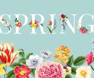 april, flowers, and hello spring image