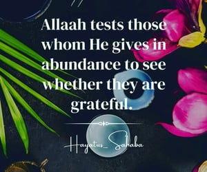 allah, grateful, and patience image