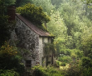 green, house, and nature image