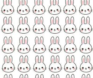 background and rabbit image