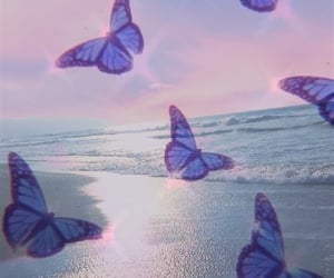 aesthetic, beach, and butterfly image