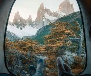 amor, aventura, and carpa image