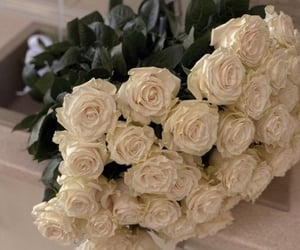flowers, roses, and white roses image