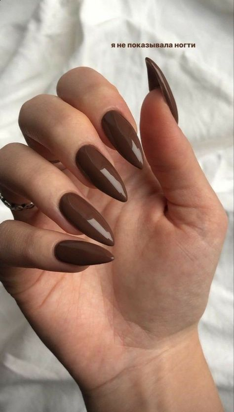girly, simple, and chocolate brown image