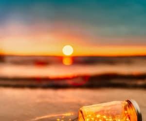 beach, sunset, and nature image