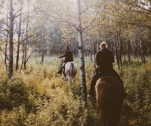equestrian, horse, and adventure image